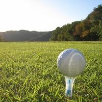 ゴルフ,ブログ